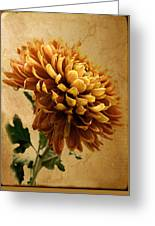 Golden Mum Greeting Card
