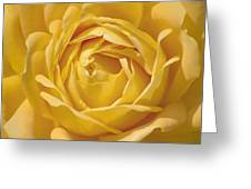 Golden One Greeting Card