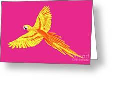 Golden Parrot Greeting Card