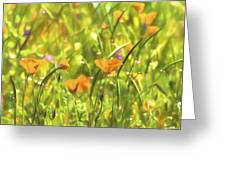 Golden Poppies In A Gentle Breeze  Greeting Card