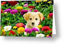 Golden Puppy In The Zinnias Greeting Card