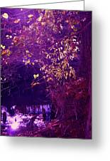 Golden Purples Greeting Card