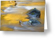 Golden Refuge Greeting Card