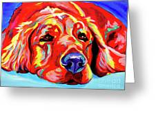 Golden Retriever - Ranger Greeting Card by Alicia VanNoy Call