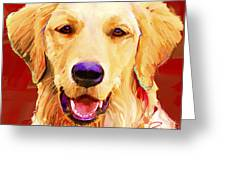 Golden Retriever 3 Greeting Card
