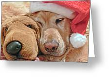 Golden Retriever Dog Santa Hat And Friend Greeting Card