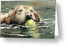 Golden Retriever Swimming Greeting Card