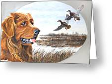 Golden Retriever With Marsh Scene Greeting Card