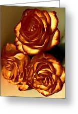 Golden Roses 3 Greeting Card