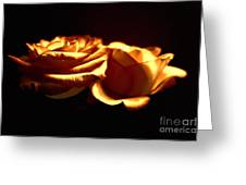 Golden Roses 5 Greeting Card