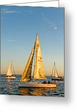 Golden Sails Greeting Card