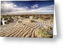Golden Sand Lines And Seaweed Rocks Of Norfolk Greeting Card