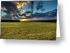 Golden Skies. Greeting Card