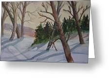 Golden Sky In The Snow Greeting Card