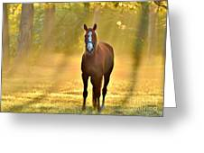 Golden Spirit 1 Greeting Card