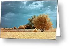 Golden Summerscape Greeting Card by Helga Novelli