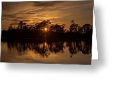 Golden Sunburst At The Lake New Jersey  Greeting Card