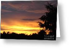 Golden Sunset 2 Greeting Card