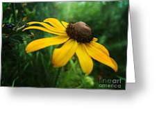 Golden Sway Greeting Card