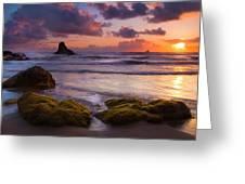 Golden Tides Greeting Card