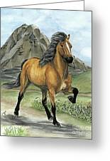 Golden Tolt Icelandic Horse Greeting Card
