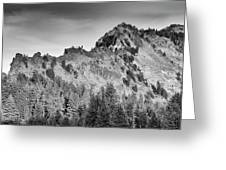Golden Trail Crater Lake Rim Greeting Card