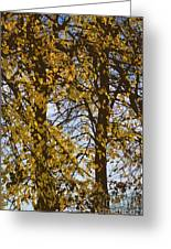 Golden Tree 2 Greeting Card