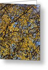 Golden Tree 3 Greeting Card