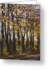 Golden Trees 1 Greeting Card