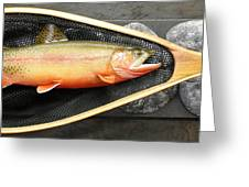 Golden Trout River Slice Greeting Card
