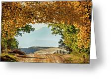 Golden Tunnel Of Love Greeting Card