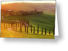 Golden Tuscany Greeting Card