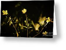 Golden Twinkles Greeting Card