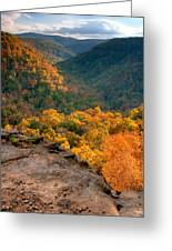 Golden Valleys Greeting Card by Ryan Heffron