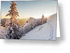 Golden Winter Greeting Card