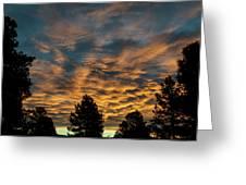 Golden Winter Morning Greeting Card by Jason Coward