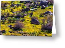 Goldenfield Hillside Greeting Card