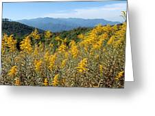 Goldenrod Mountain View Greeting Card