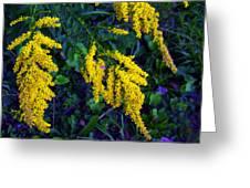 Goldenrod Greeting Card