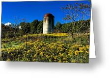 Goldenrod Surrounded Silo Greeting Card