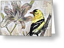 Goldfinch And Lily Greeting Card