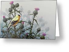 Goldfinch And Thistles Greeting Card