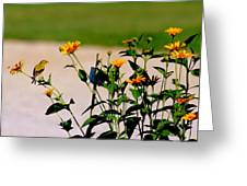 Goldfinch And Yellow Flowers Greeting Card