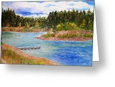 Goldwater Lake Greeting Card by Jamie Frier