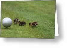 Golf Anyone Greeting Card