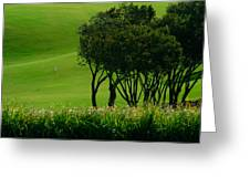 Golf Course Abstract Greeting Card
