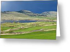 Golfing And Grazing Greeting Card