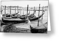 Gondolas By St Mark's Greeting Card