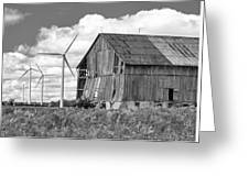 Gone With The Wind 3 Bw Greeting Card
