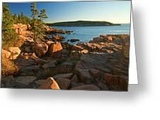 Good Morning Acadia Greeting Card